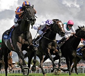 Glorious Goodwood betting offers for the whole festival